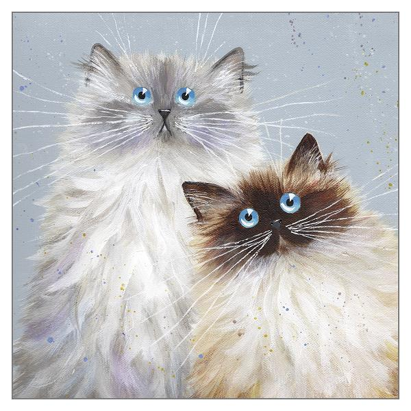 'Sully and Bucky' Blank Cat Greeting Card by Kim Haskins