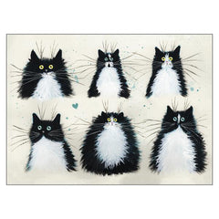 'Tuxedo Cats' Blank Black & White Cat Greeting Card by Kim Haskins