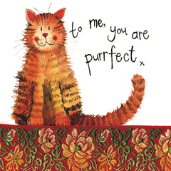 Purrfect Cat Little Sparkle Greetings Card