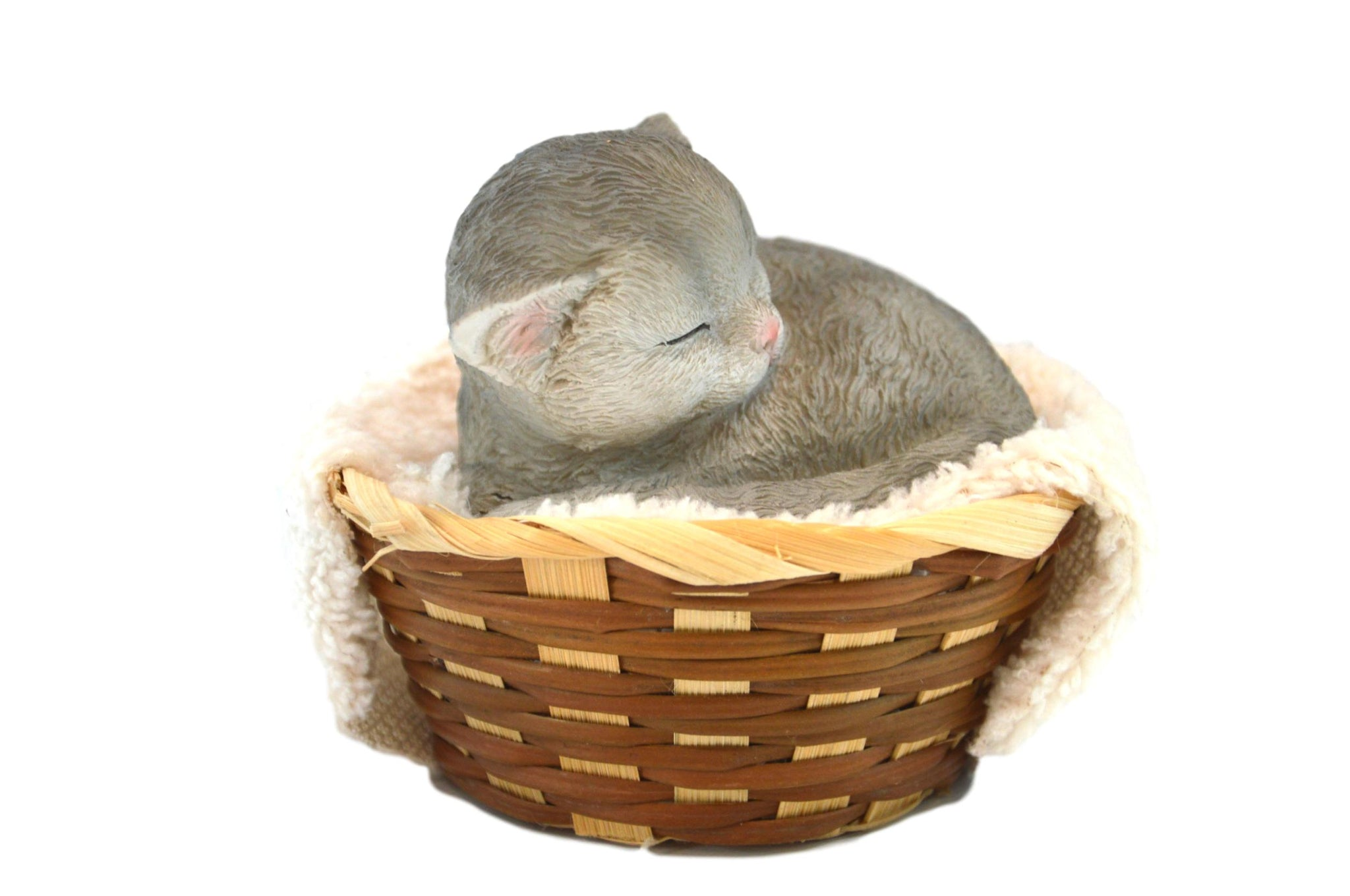Cat Laying in Basket