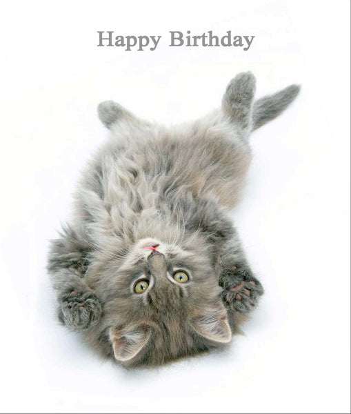 Tickle Me Cat Birthday Card