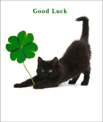 Lucky Clover Cat Greeting Card