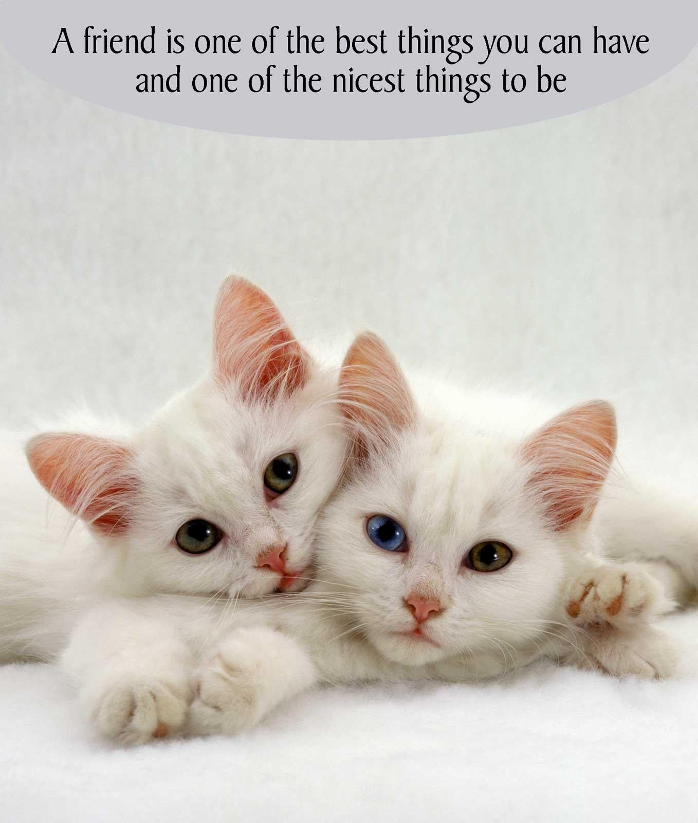A Friend is One of the Best Things Greeting Card