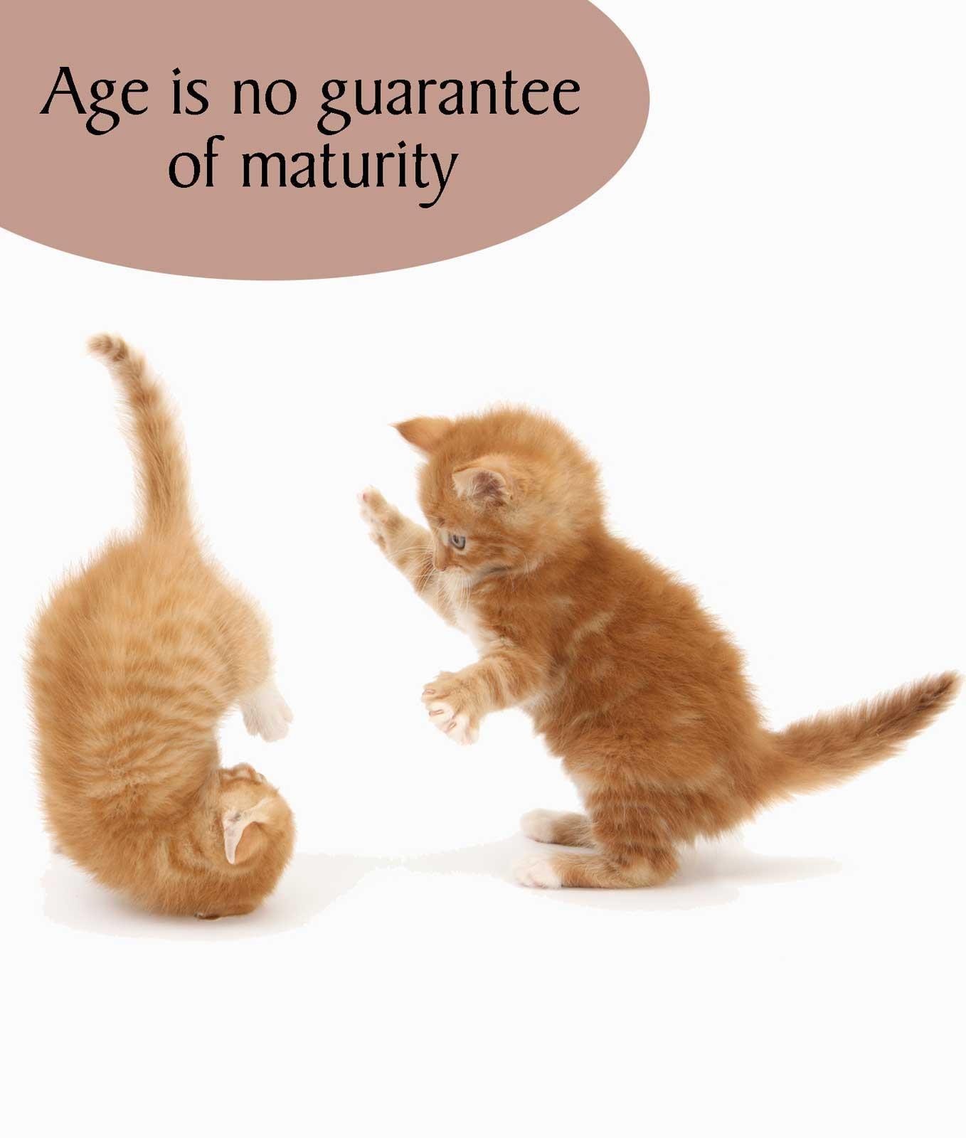 Age is No Guarantee of Maturity Birthday Card