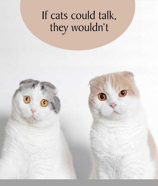 If Cats Could Talk They Wouldnt Greeting Card