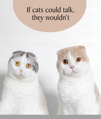 If Cats Could Talk, They Wouldn't Greeting Card