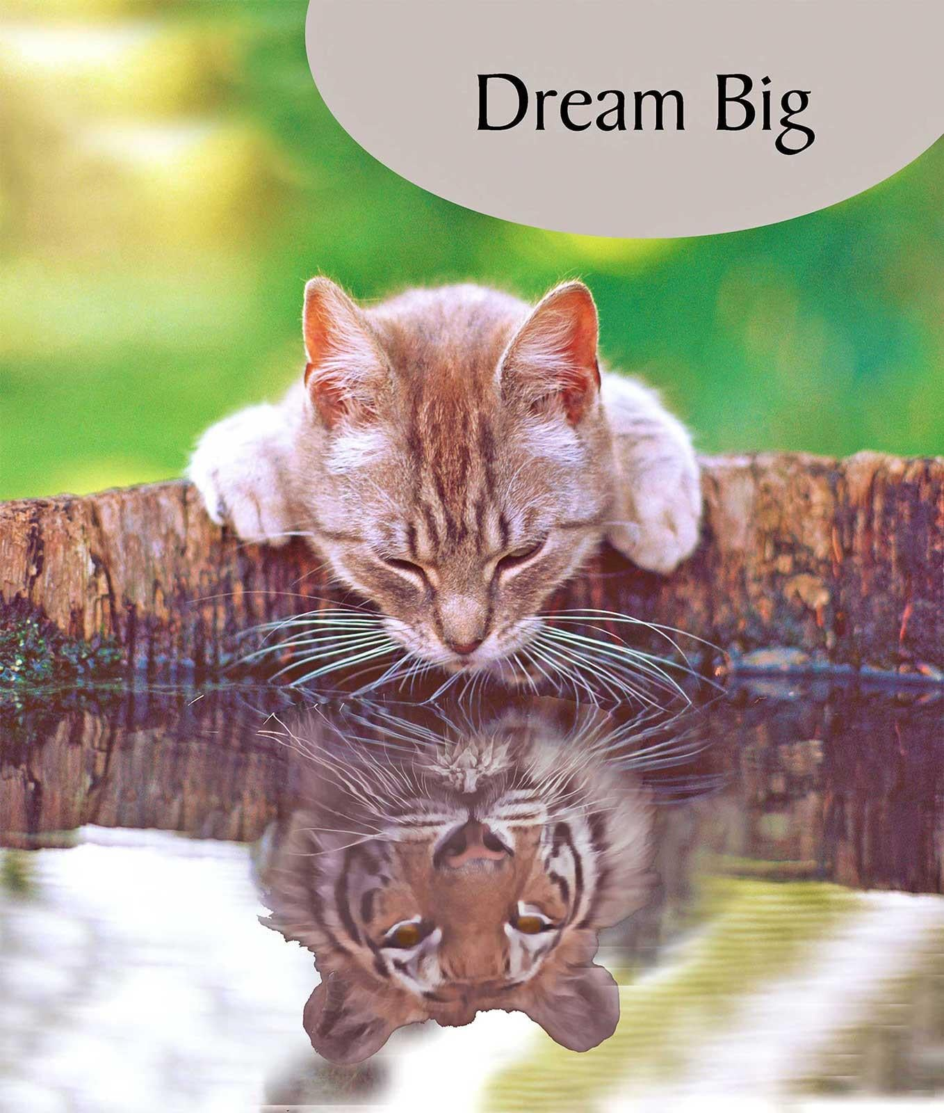 Dream Big Cat Greeting Card
