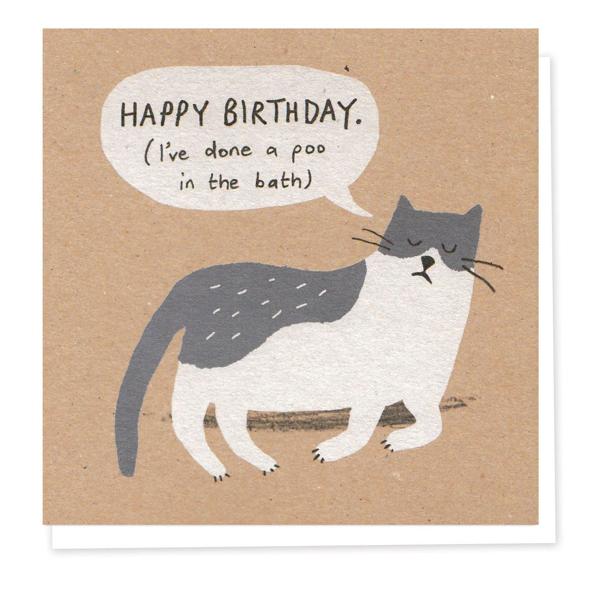 'Naughty Cat' Birthday Card