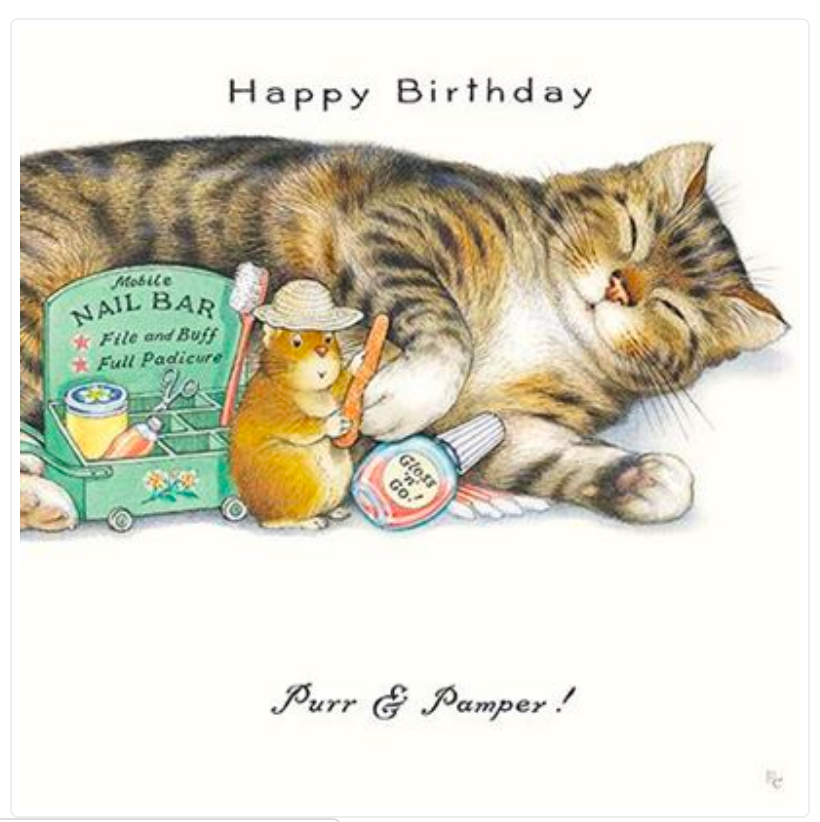 Purr & Pamper Cat Birthday Greetings Card by Peter Cross (PCII0108)