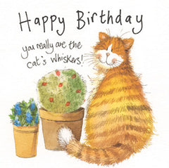 Whiskers Cat Birthday Card