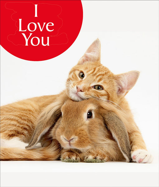 I Love You Cat & Rabbit Greetings Card
