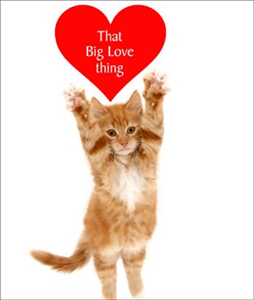 Big Love Thing Cat Greetings Card
