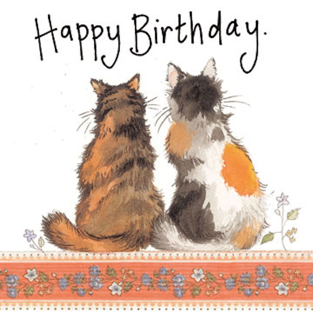Tortoiseshell Cats Birthday Card