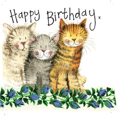 The Three Amigos Cats Birthday Card