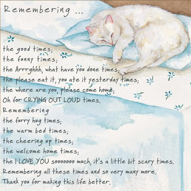 'Remembering Cat' Cat Greeting Card by Anna Danielle