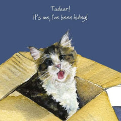 'Hiding Cat' Maine Coon Cat Greeting Card by Anna Danielle