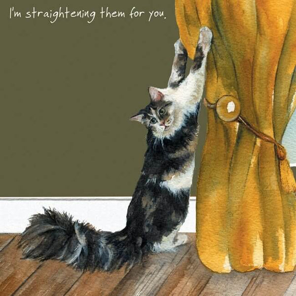 'Straightening' Cat Greeting Card by Anna Danielle