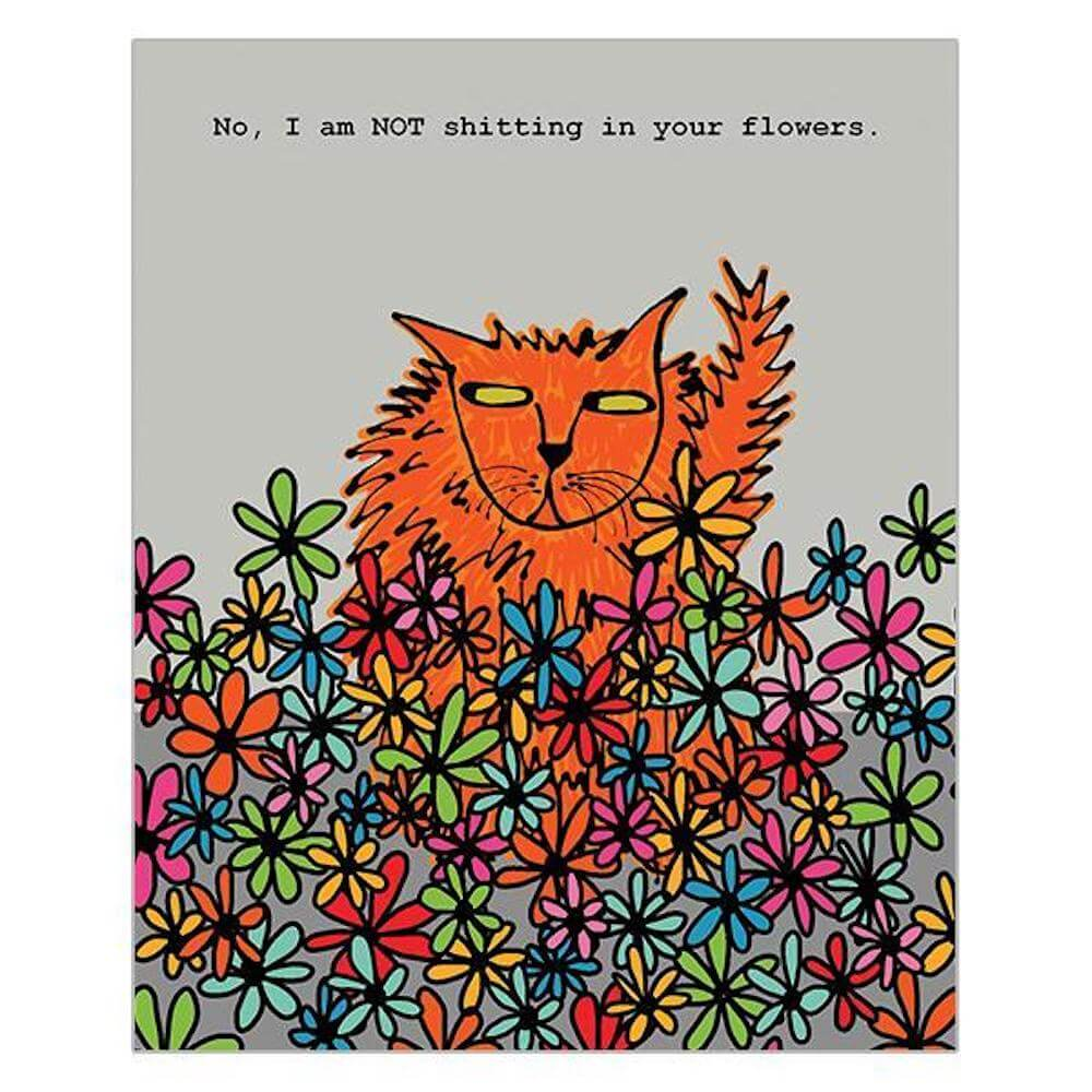 'No, I am NOT shitting in your Flowers' Funny Cat Greeting Card