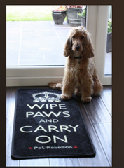 Wipe Paws & Carry On Door Runner