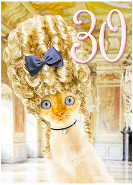 Fabulous 30th Cat with Big Hair Birthday Card