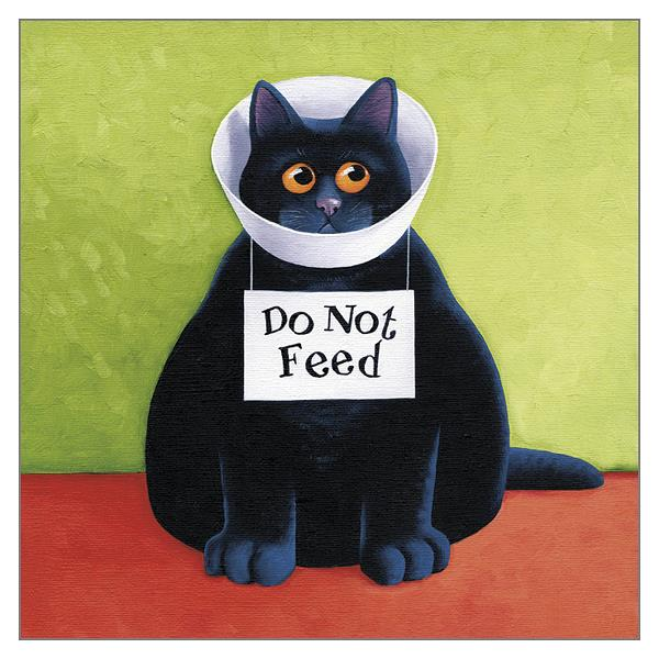 'Do Not Feed' Cat Greeting Card