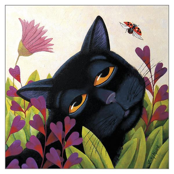 'Ladybug' Cat Greeting Card