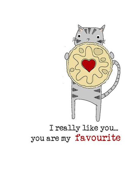 You are my favourite (really like you) Cat Greetings Anniversary Valentine's Day Card