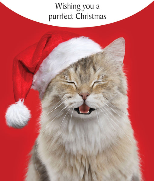 Purrfect Christmas Cat Greeting Card