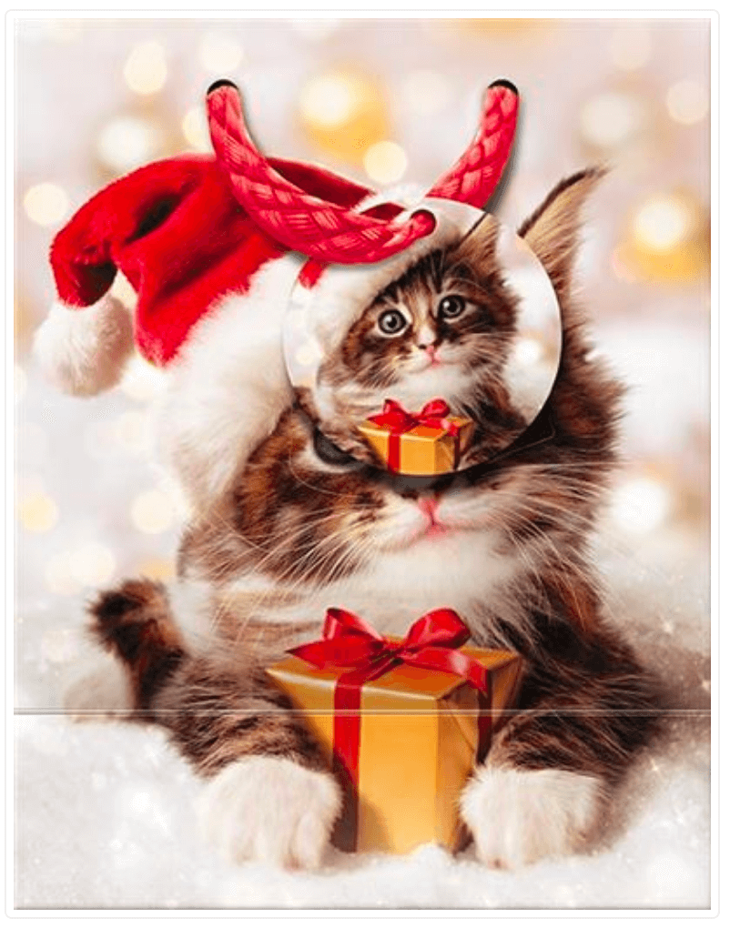 Christmas Kitten Gift Bag