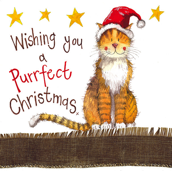 Claws Cat Sparkle Christmas Card