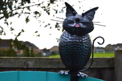 Sitting on Fence Metal Cat