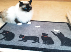 Catch Cat Door Mat