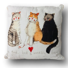The Good the Bad & Incredibly Furry Cat Cushion
