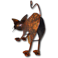 Large Stretching Copper Effect Cat