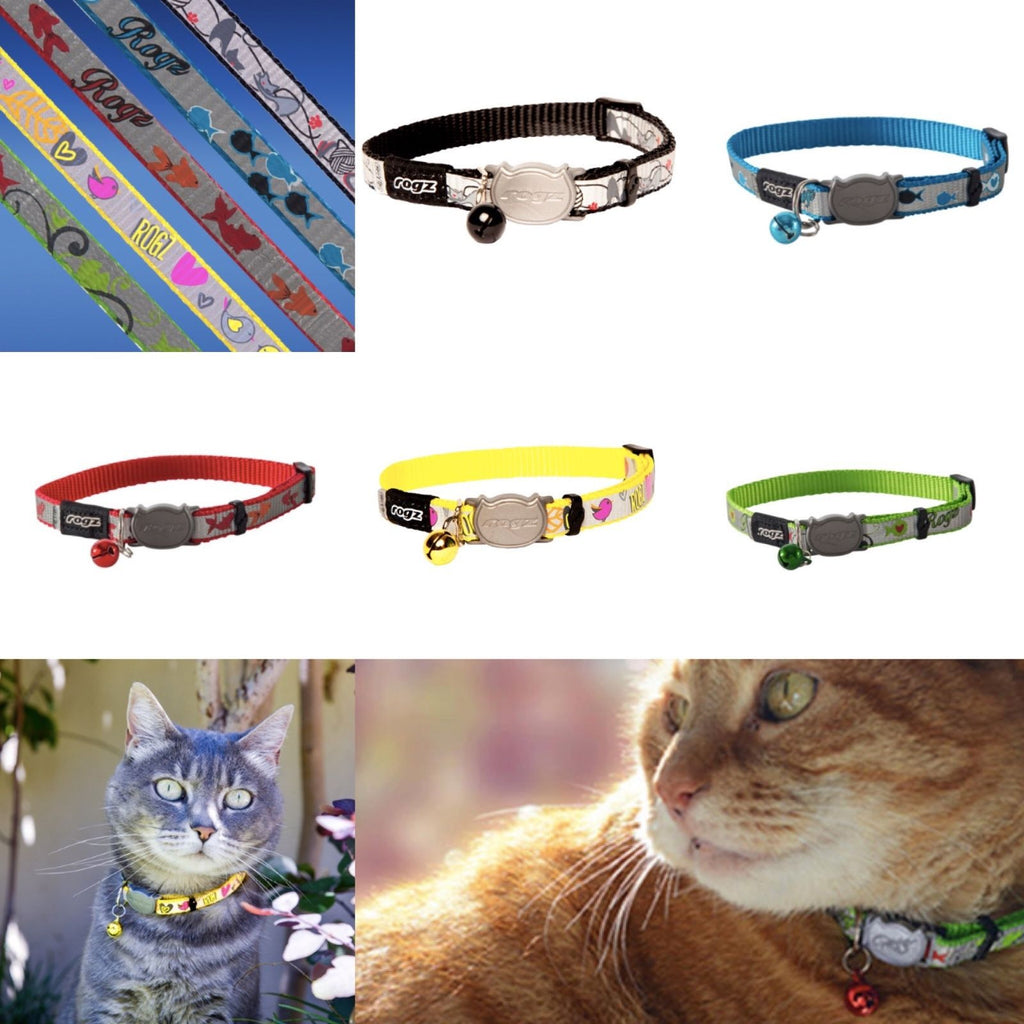 Blue Reflecto Cat Collar