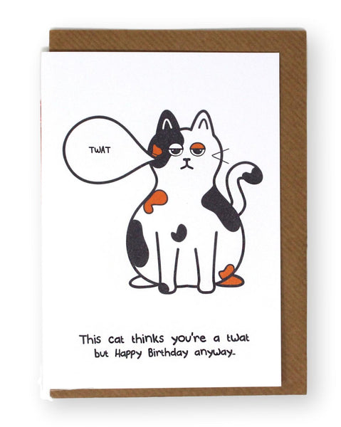 This Cat Thinks Your A Twat Birthday Card