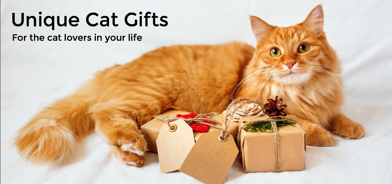 Top 10 Unique Gifts for Cat Lovers