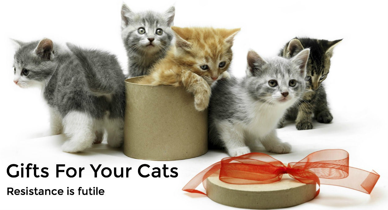 Gifts for your cats