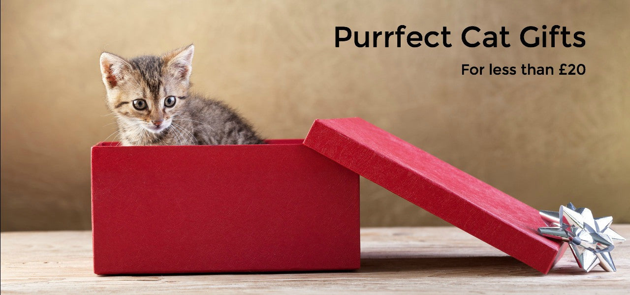 Perfect Cat Gifts for less than £20