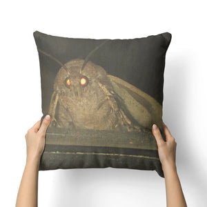 MOTH MEME CANVAS PILLOW