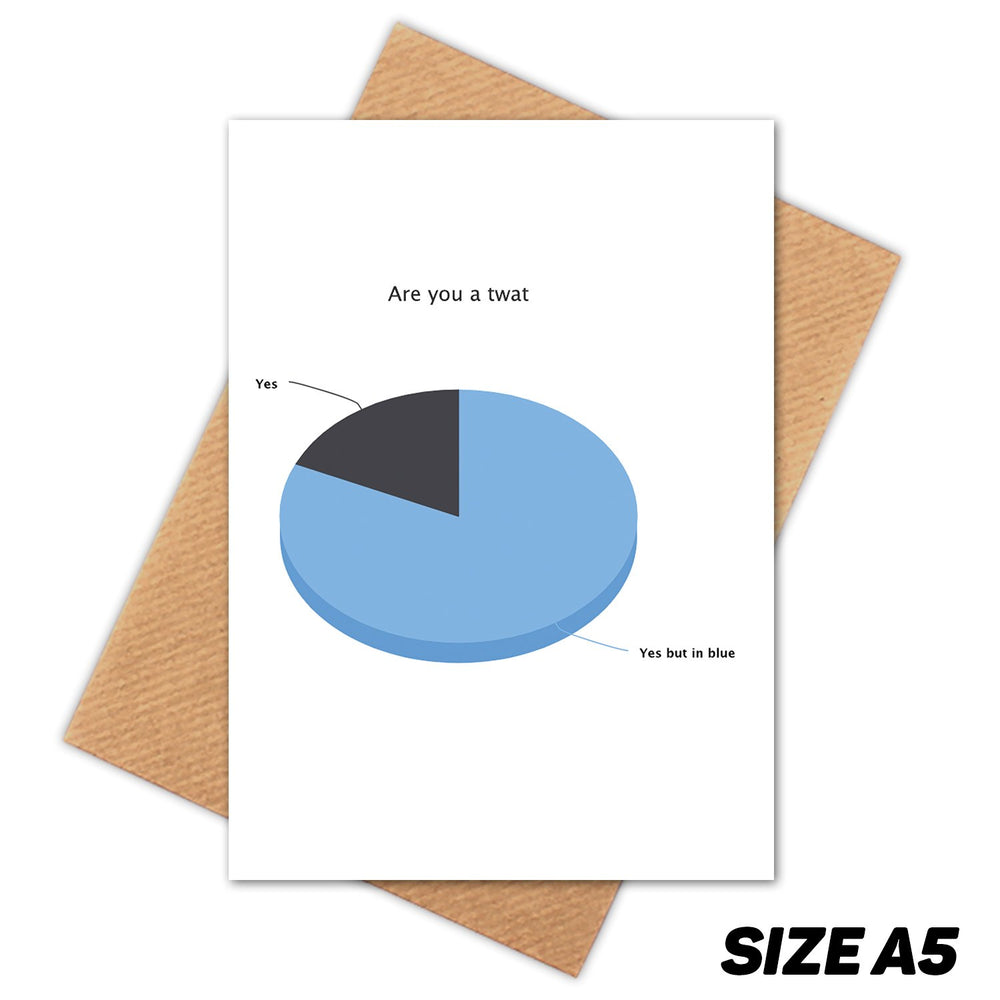 YOU ARE A TWAT PIE CHART HAPPY BIRTHDAY CARD