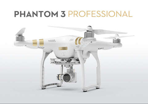 DJI Phantom 3 Professional With Extra Battery / Hard Backpack Combo - Drone Shop Canada - Professional UAV Sales Repair