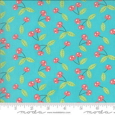 Abi Hall - Hello Sunshine - Cherries in aqua - The Next Stitch
