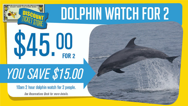 2 Dolphin Watching Passes