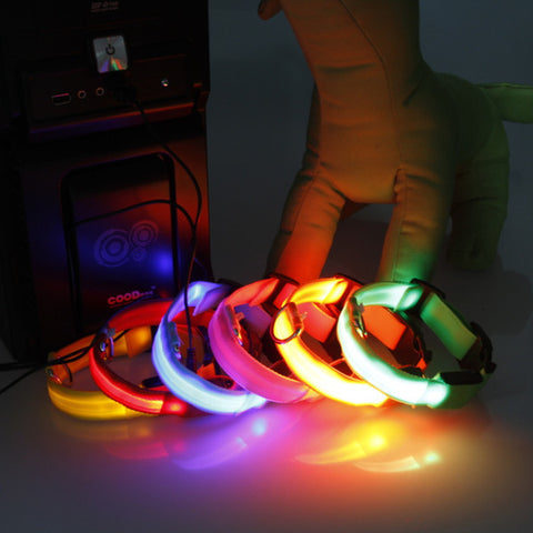 LED Rechargeable Dog Collar - Crisea - 1