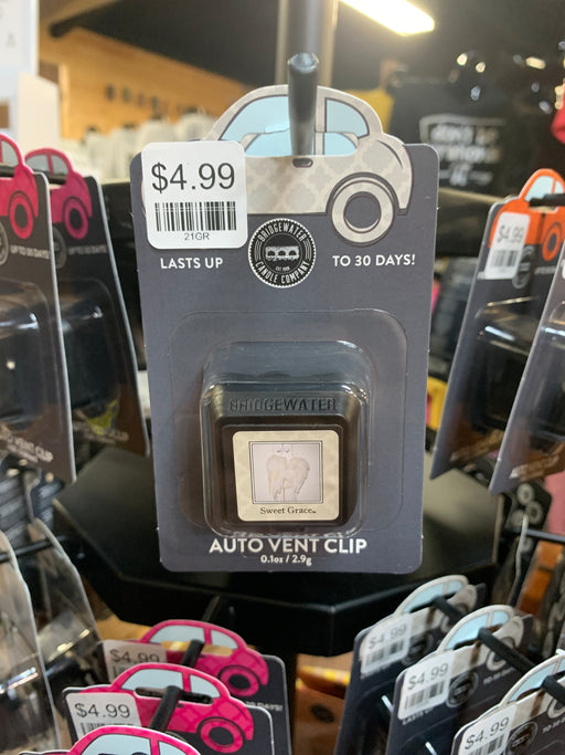 Scented Car Clips.  Air fresheners for your car.