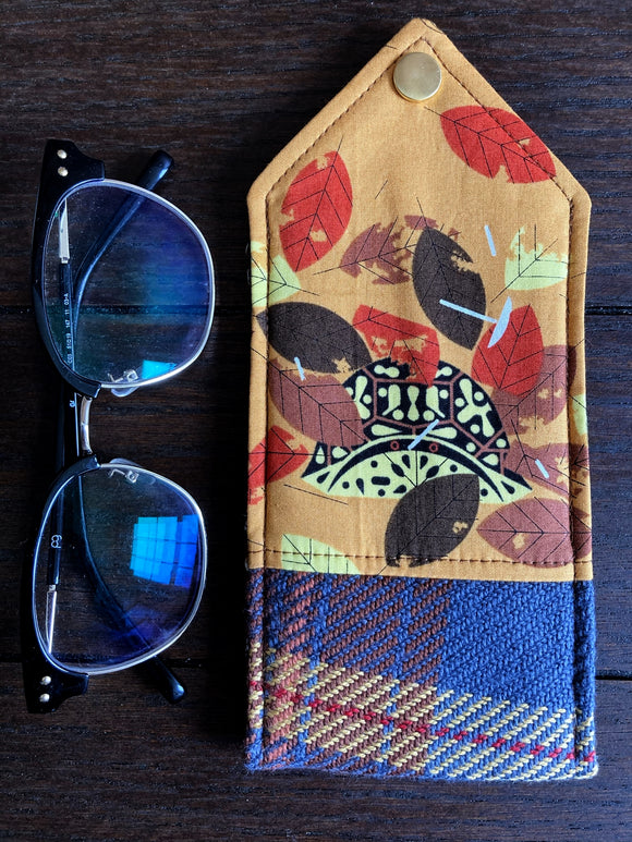 Box Turtle Padded Glasses Case