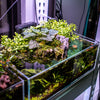 Advice on How to Fake a High-Tech Aquarium