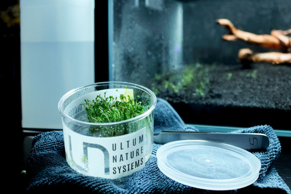 Ultum Nature Systems Tissue Culture Plants