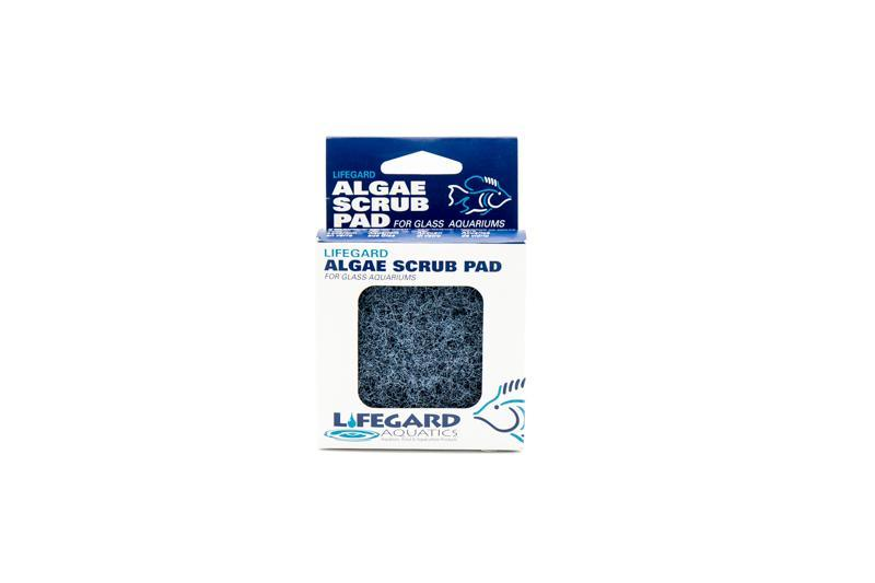 accessories Blue Lifeguard Aquatics Algae Scrub Pad